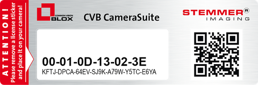Example of a Mac address with the licence key for a GigE Vision camera
